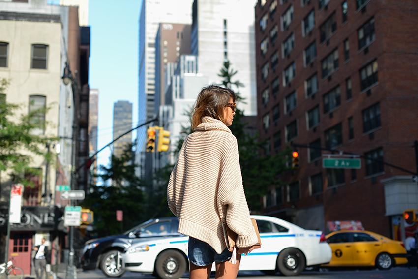 the petticoat resume 2014 new york streets  (50)