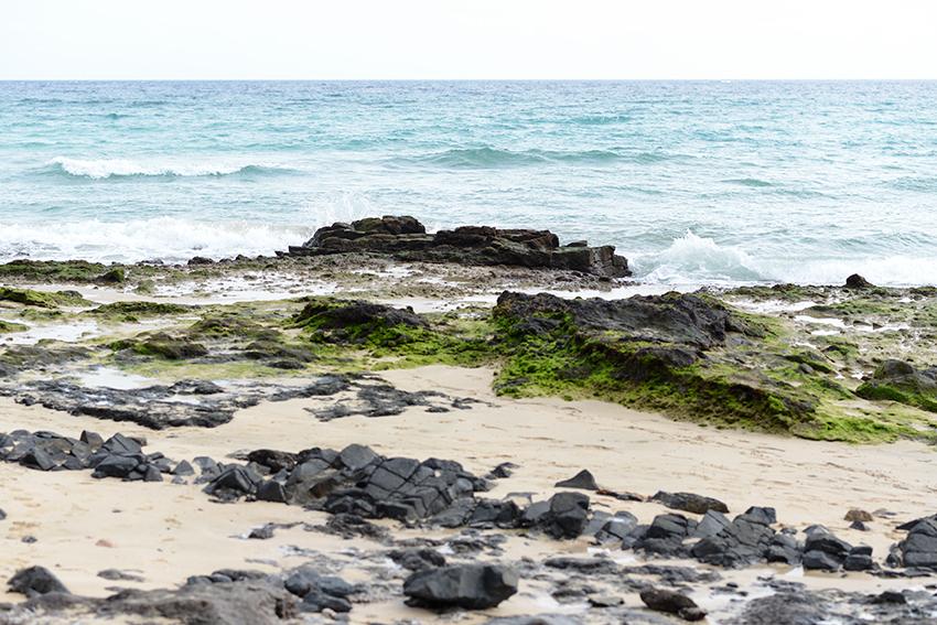 THE PETTICOAT FUERTEVENTURA BLUE NAVY COAT BEACH (12)