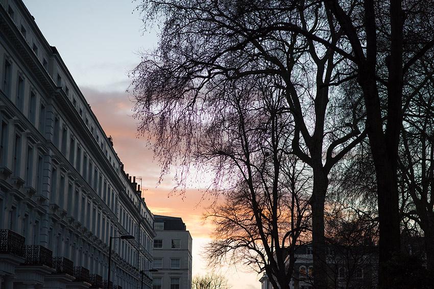 the petticoat london photo diary views (22)