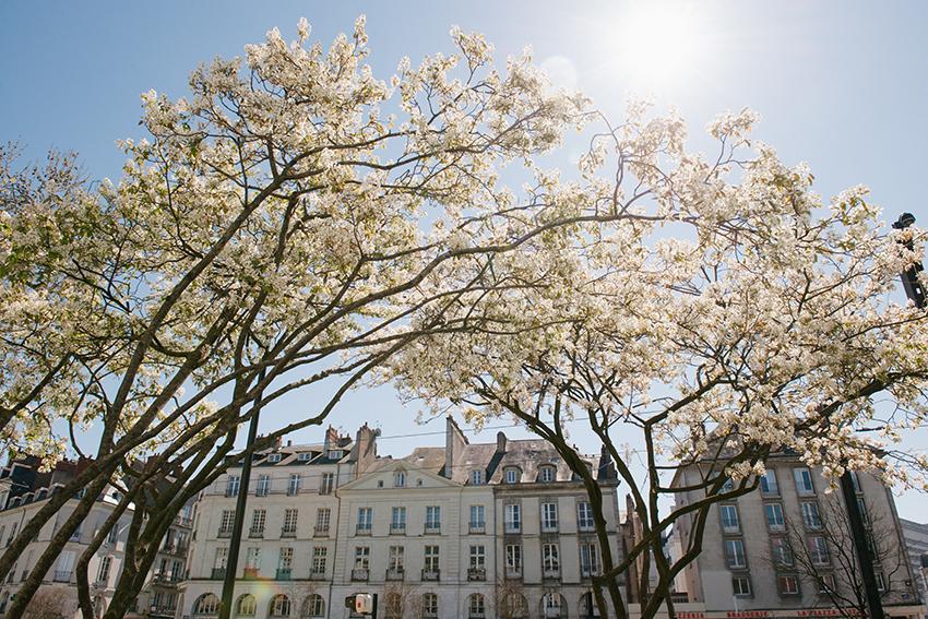 The petticoat- France Road trip- Nantes - Rennes -Le mont Saint Michel (15)