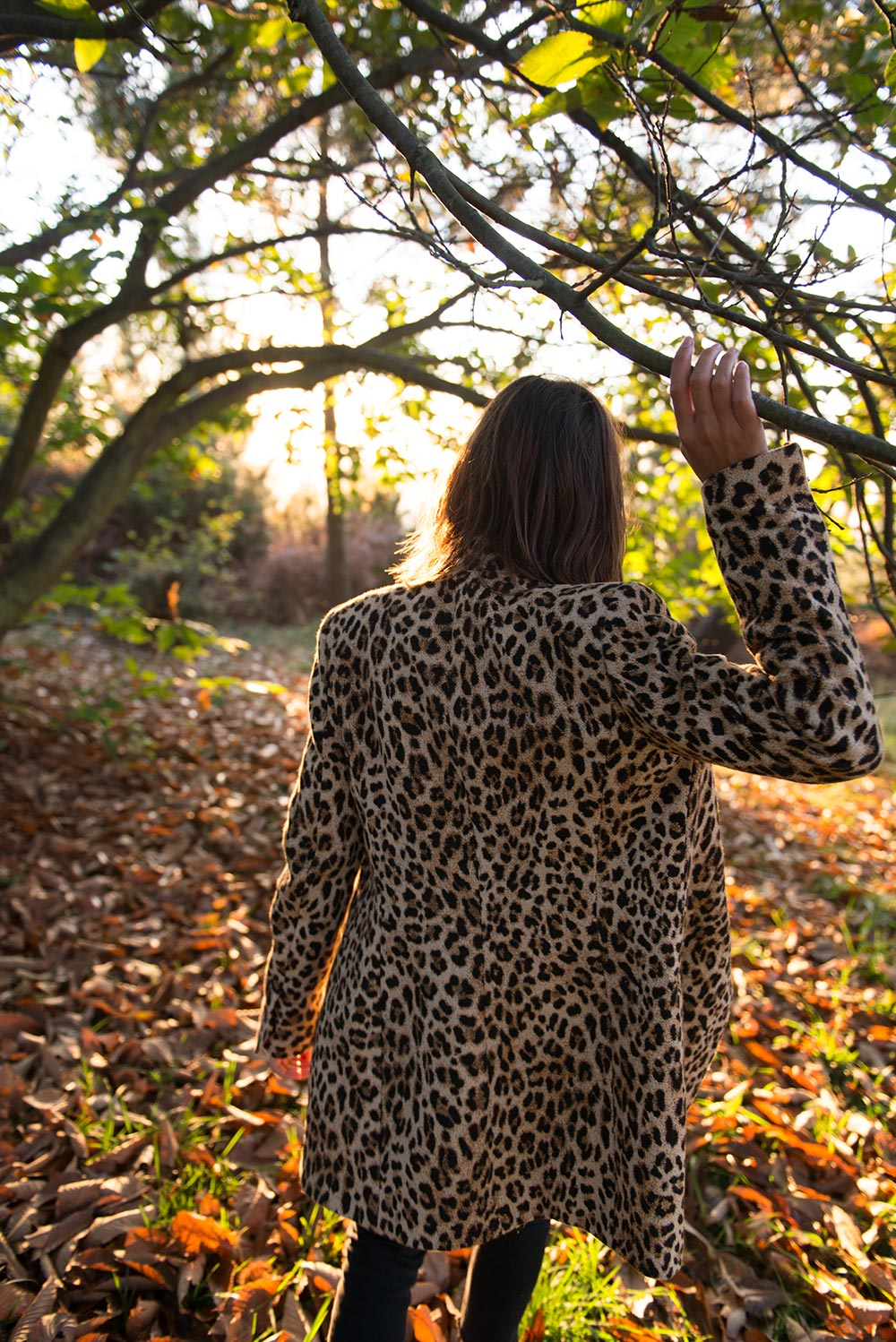 The Petticoat-Nature Series-Leopard Coat- (7)