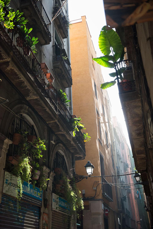 The Petticoat- Barcelona- January 2016 (21)