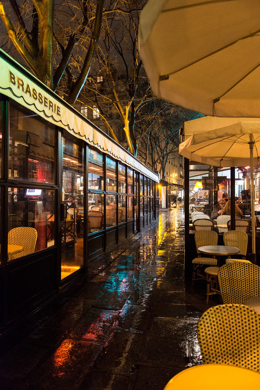 The Petticoat-Paris Diary- Sandro (30)