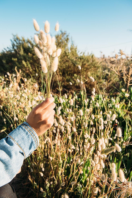 The Petticoat - Portugal Algarve Road Trip 2016 -25