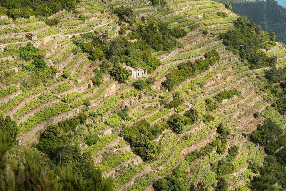 The Petticoat-Italy-Cinqueterre-Portofino (24)
