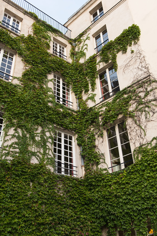 paris-fashion-week-photo-diary-september-28