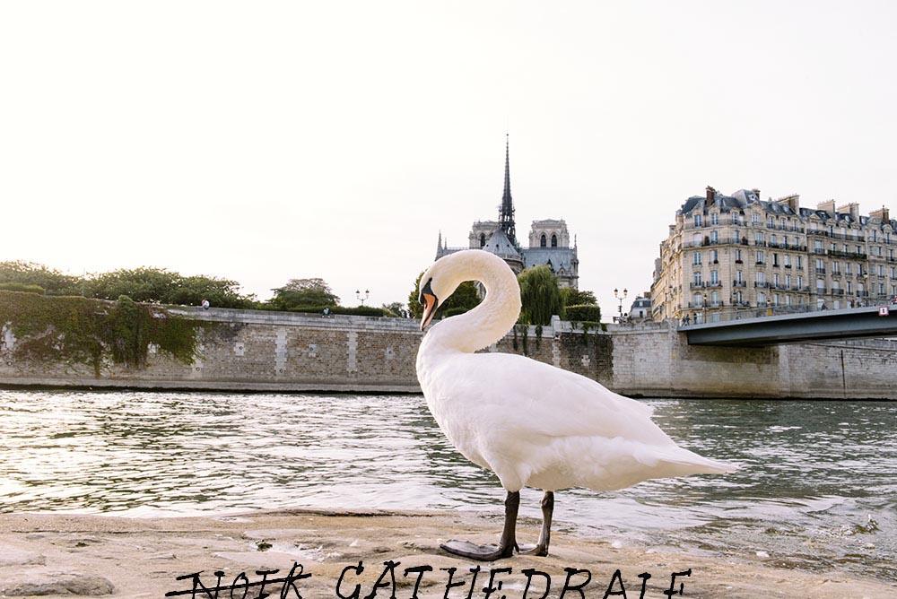 the-petticoat-paris-photo-diary-fashion-week-9